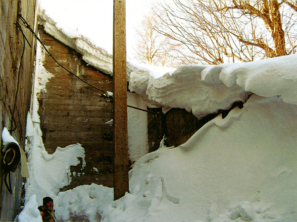 Fortet Dobrosov i vintervila
