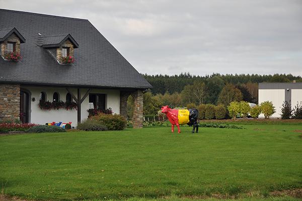 Kor, av alla de slag, var vanligt förekommande i Belgien. Dock var det inte ofta man såg de dekorerade med de belgiska färgerna