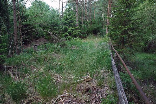 Den gamla bron som skulle skyddas. Idag väl maskerad av naturen.