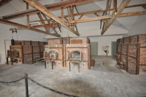 Dachau 3_resize