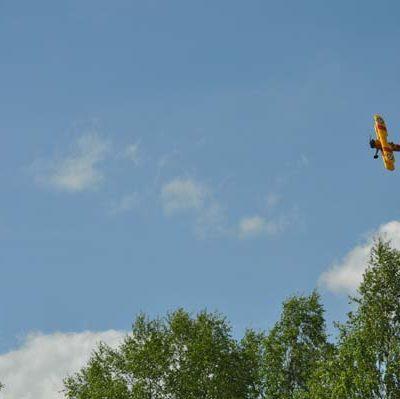 Vackert gult mot den blå himlen!