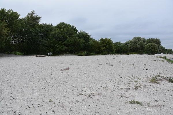 Idag får man leta länge för att hitta spåren efter de gamla värnen i Klagshamn.